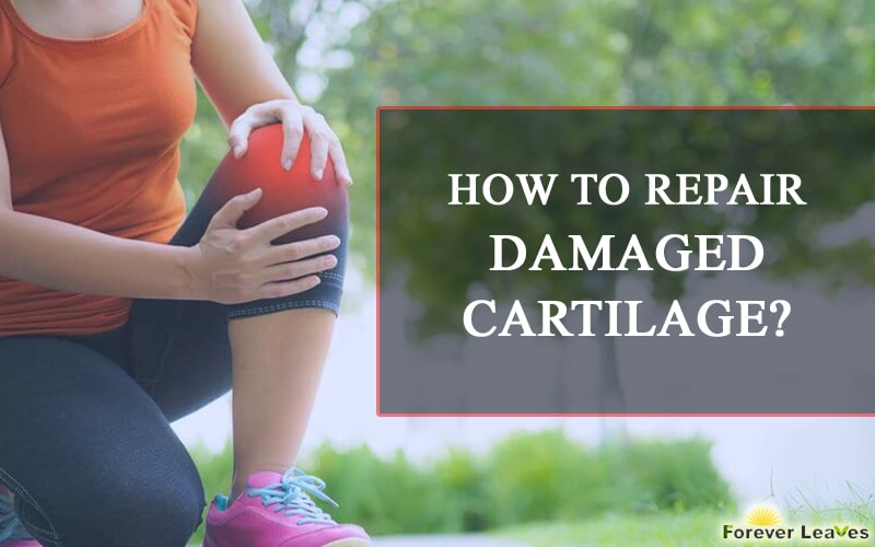 How to Repair Damaged Cartilage