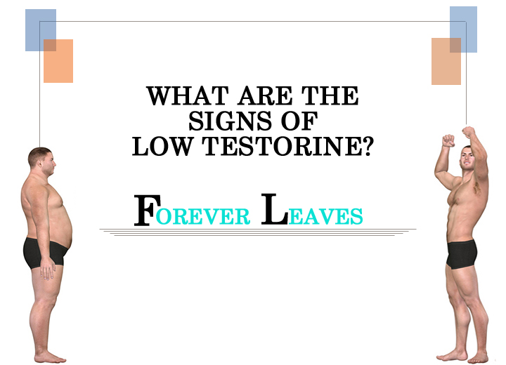 Low Testosterone Symptoms : What are the signs of low Testosterone?