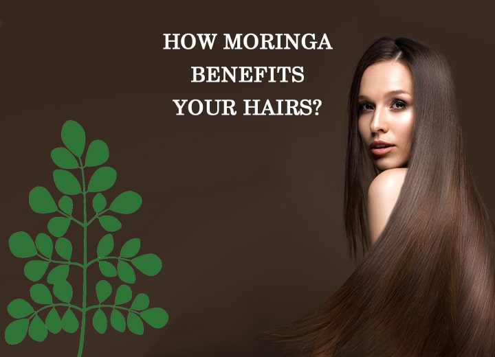 MORINGA FOR HAIR : IS MORINGA GOOD FOR YOUR HAIR?